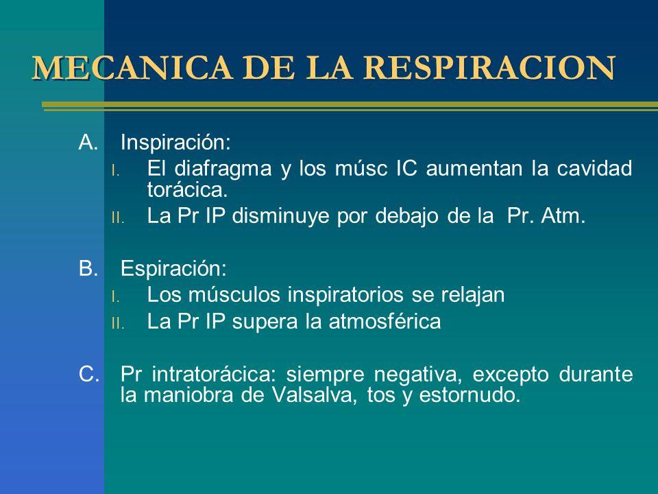 MECANICA DE LA RESPIRACION A.Inspiración: I. El diafragma y los músc IC aumentan la cavidad torácica. II. La Pr IP disminuye por debajo de la Pr. Atm.