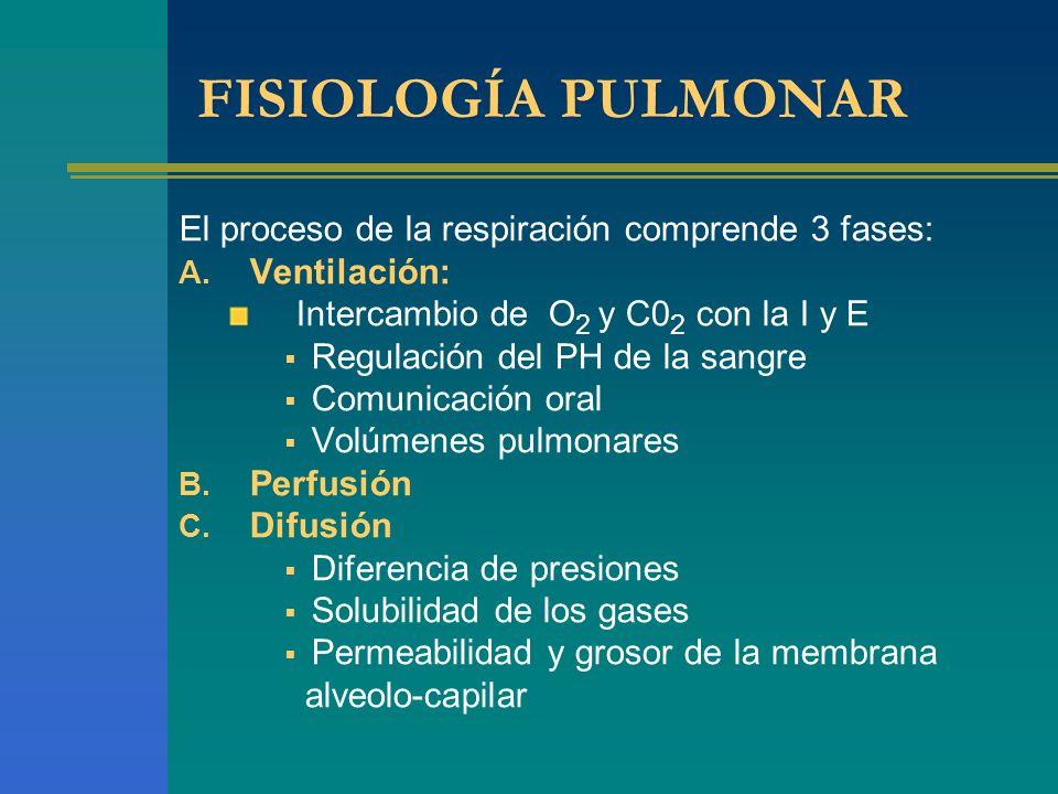 FISIOLOGÍA PULMONAR El proceso de la respiración comprende 3 fases: A. Ventilación: Intercambio de O 2 y C0 2 con la I y E Regulación del PH de la san