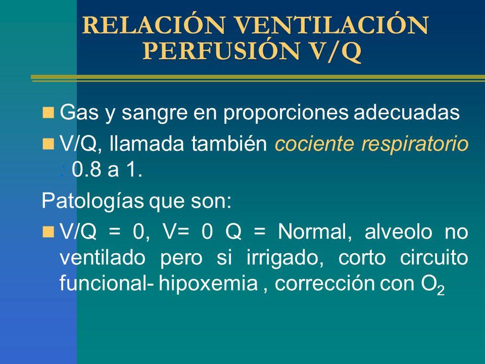 RELACIÓN VENTILACIÓN PERFUSIÓN V/Q Gas y sangre en proporciones adecuadas V/Q, llamada también cociente respiratorio : 0.8 a 1. Patologías que son: V/