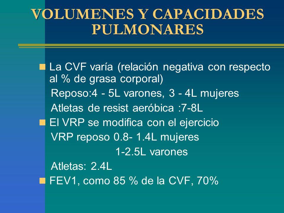 VOLUMENES Y CAPACIDADES PULMONARES La CVF varía (relación negativa con respecto al % de grasa corporal) Reposo:4 - 5L varones, 3 - 4L mujeres Atletas