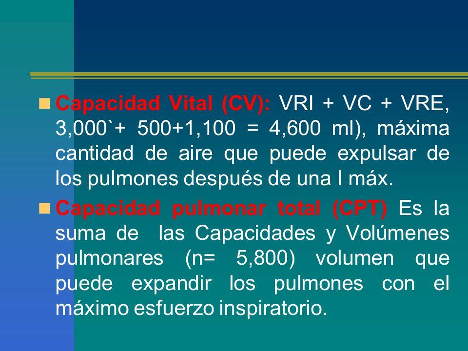 Capacidad Vital (CV): VRI + VC + VRE, 3,000`+ 500+1,100 = 4,600 ml), máxima cantidad de aire que puede expulsar de los pulmones después de una I máx.