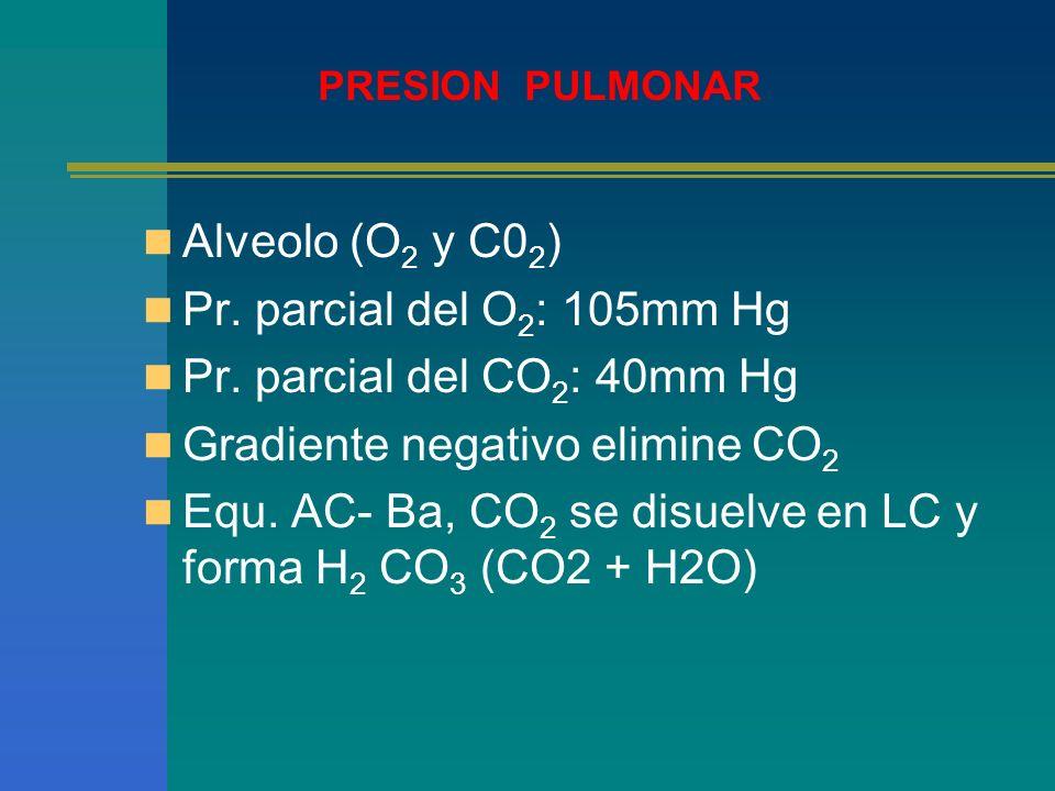 Alveolo (O 2 y C0 2 ) Pr. parcial del O 2 : 105mm Hg Pr. parcial del CO 2 : 40mm Hg Gradiente negativo elimine CO 2 Equ. AC- Ba, CO 2 se disuelve en L