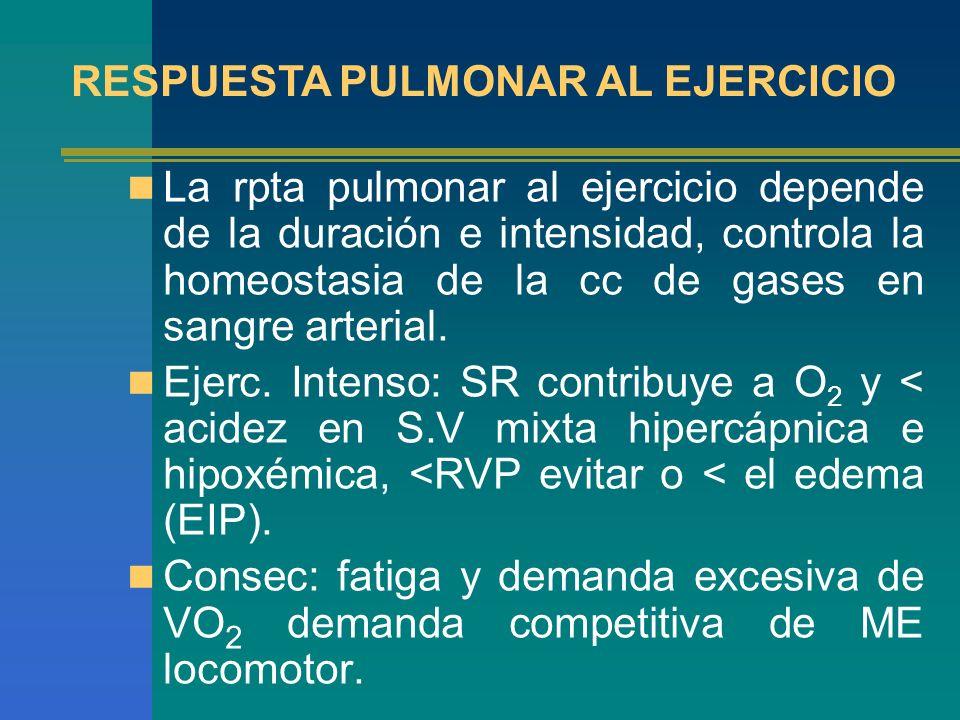 La rpta pulmonar al ejercicio depende de la duración e intensidad, controla la homeostasia de la cc de gases en sangre arterial. Ejerc. Intenso: SR co