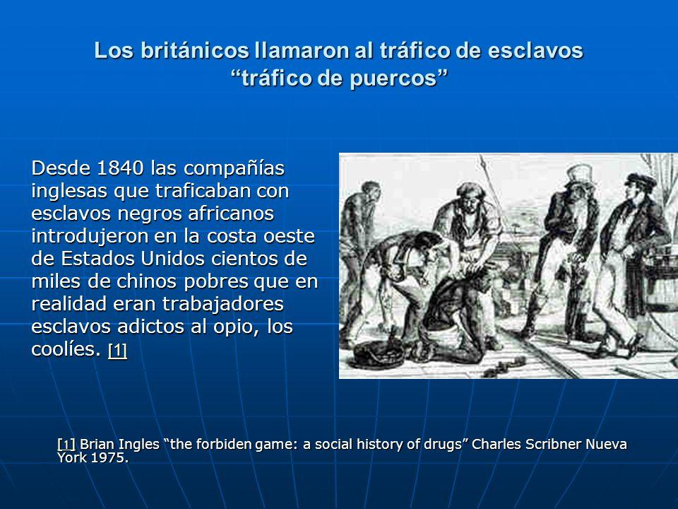 Los británicos llamaron al tráfico de esclavos tráfico de puercos Desde 1840 las compañías inglesas que traficaban con esclavos negros africanos introdujeron en la costa oeste de Estados Unidos cientos de miles de chinos pobres que en realidad eran trabajadores esclavos adictos al opio, los coolíes.