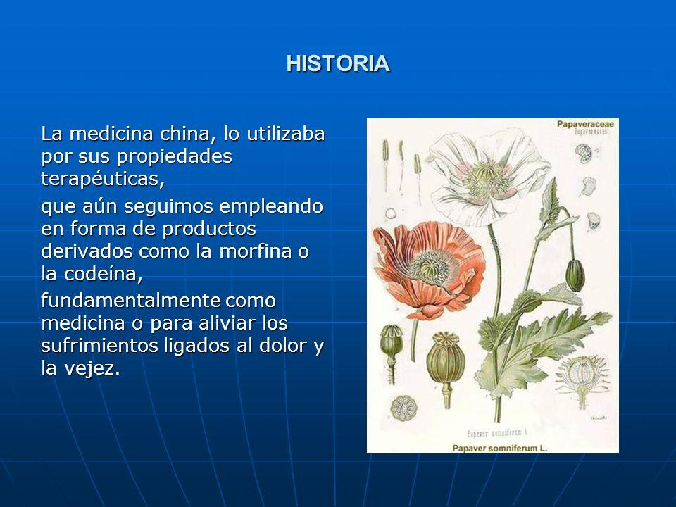 HISTORIA La medicina china, lo utilizaba por sus propiedades terapéuticas, que aún seguimos empleando en forma de productos derivados como la morfina o la codeína, fundamentalmente como medicina o para aliviar los sufrimientos ligados al dolor y la vejez.