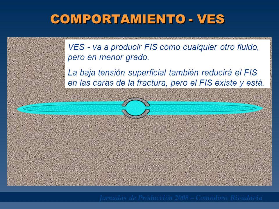Jornadas de Producción 2008 – Comodoro Rivadavia COMPORTAMIENTO - VES VES - va a producir FIS como cualquier otro fluido, pero en menor grado. La baja