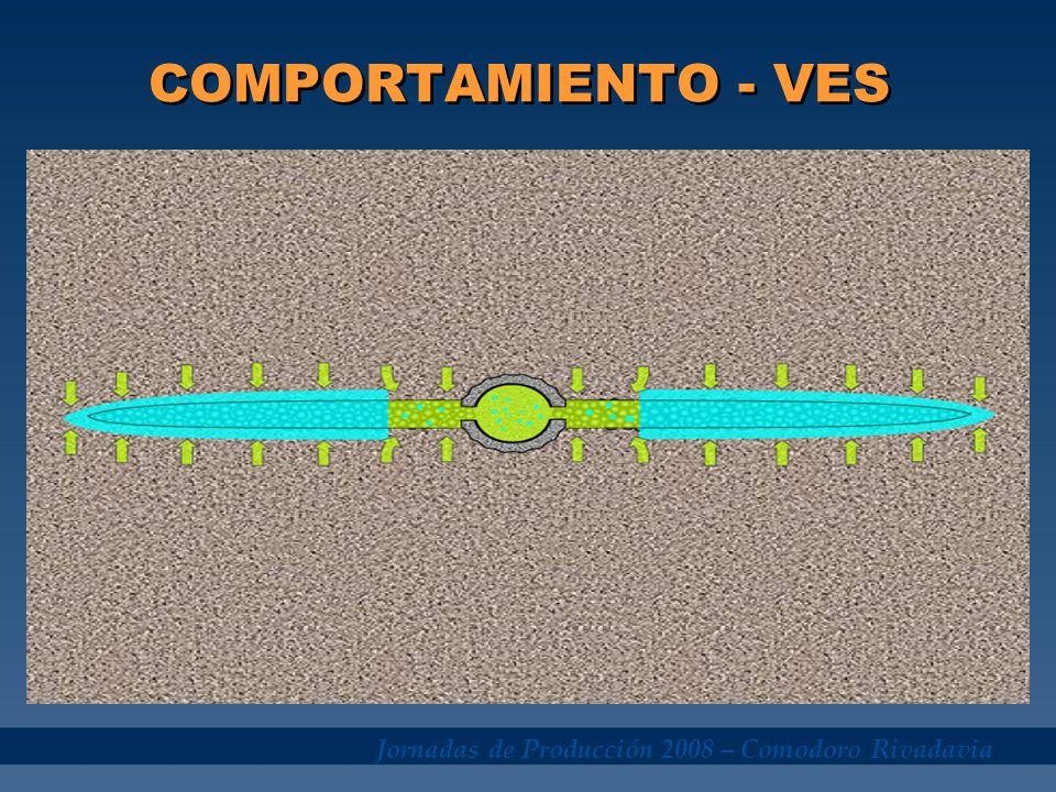 Jornadas de Producción 2008 – Comodoro Rivadavia COMPORTAMIENTO - VES