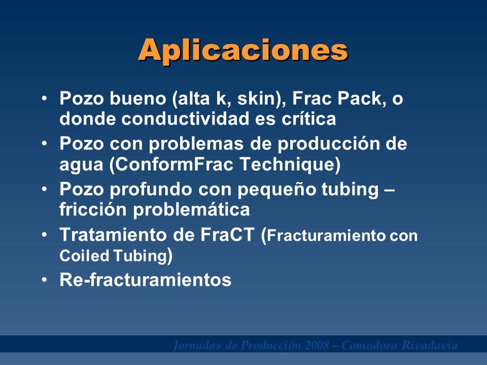 Jornadas de Producción 2008 – Comodoro Rivadavia Aplicaciones Pozo bueno (alta k, skin), Frac Pack, o donde conductividad es crítica Pozo con problema