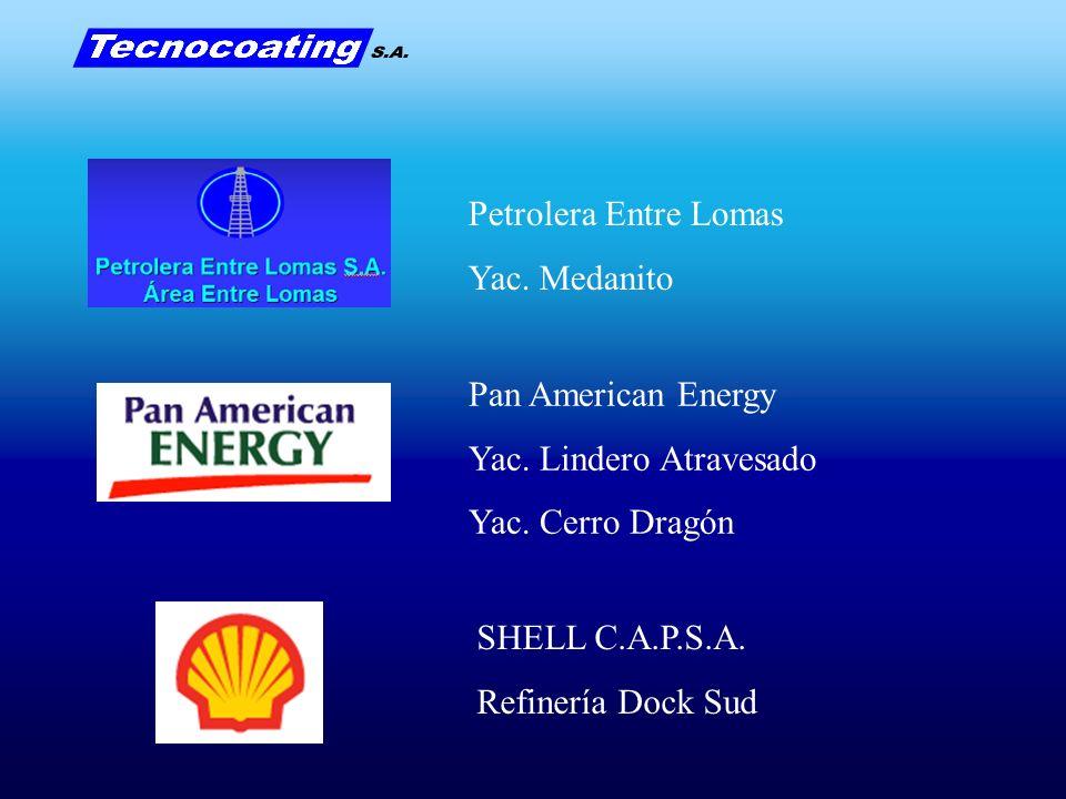 Pan American Energy Yac. Lindero Atravesado Yac. Cerro Dragón SHELL C.A.P.S.A. Refinería Dock Sud Petrolera Entre Lomas Yac. Medanito