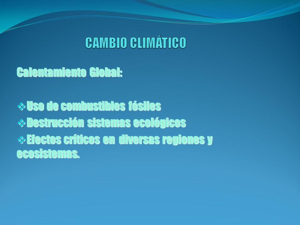 - Aumento de gases de efecto invernadero debido a una mayor actividad industrial, agrícola y del transporte.