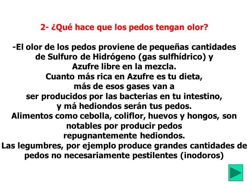 1- ¿Qué es el pedo? ¿Cuál es su composición? -Flato, del latín flatus, significa soplo y es un compuesto gases altamente variable, expelida por el ano