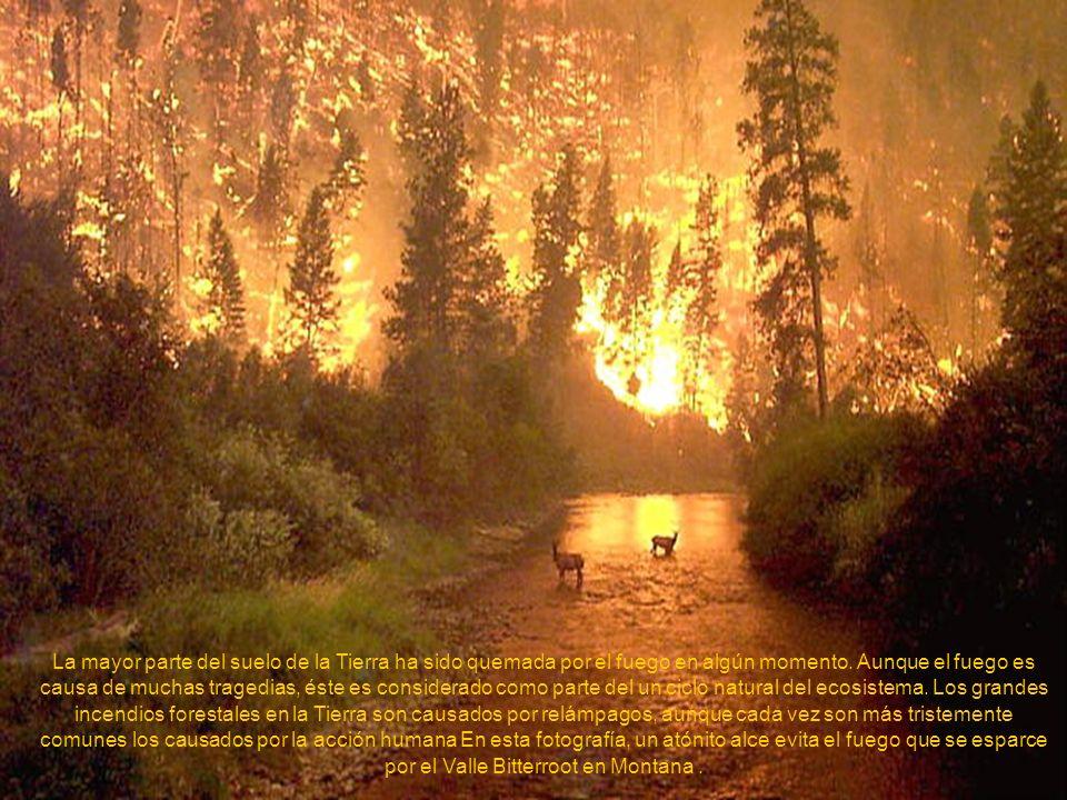 El Monte Anatahan no había entrado en erupción en toda la historia escrita. Pero el 10 de Mayo de 2004, este pequeño volcán de las Islas Mariana del N