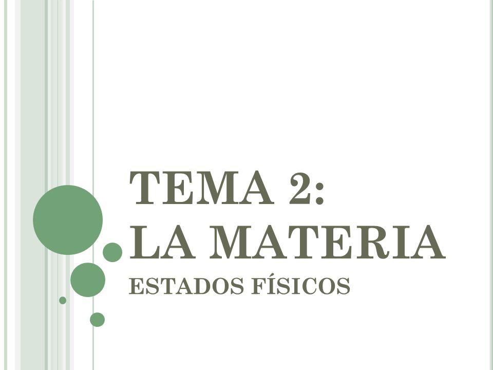 INDICE 1.LOS GASES Y LA TEORÍA CINÉTICA LOS GASES Y LA TEORÍA CINÉTICA 2.