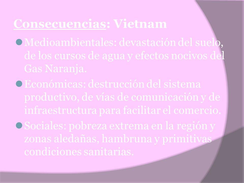 Consecuencias: Vietnam Medioambientales: devastación del suelo, de los cursos de agua y efectos nocivos del Gas Naranja. Económicas: destrucción del s