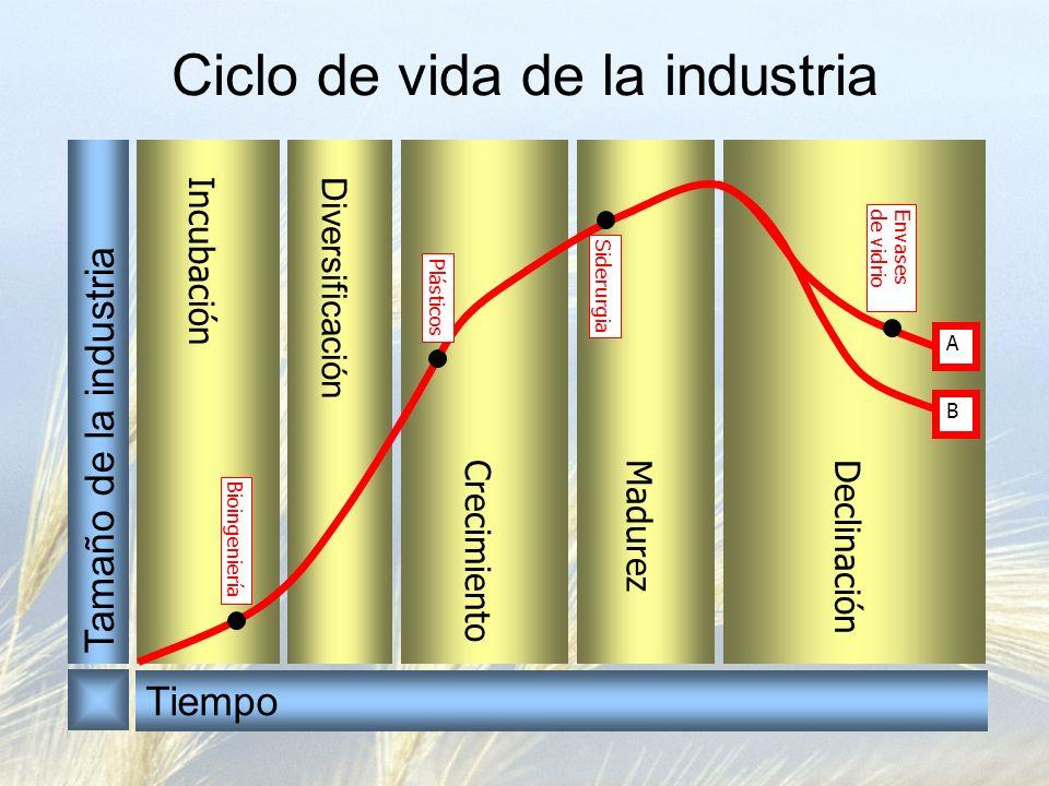 Diversificación Incubación CrecimientoMadurezDeclinación Ciclo de vida de la industria A B Bioingeniería Plásticos Siderurgia Envasesde vidrio Tamaño de la industria Tiempo