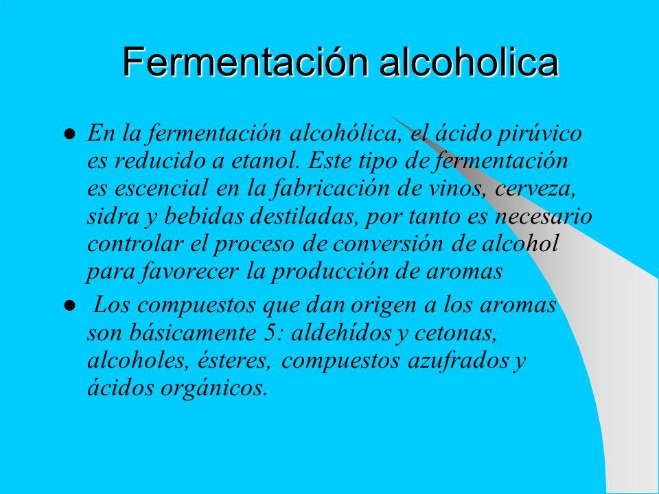 Fermentación alcoholica En la fermentación alcohólica, el ácido pirúvico es reducido a etanol. Este tipo de fermentación es escencial en la fabricació