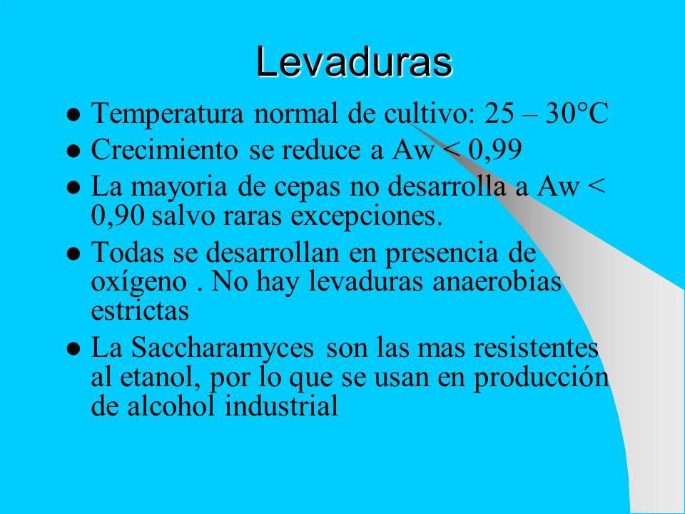 Levaduras Temperatura normal de cultivo: 25 – 30°C Crecimiento se reduce a Aw < 0,99 La mayoria de cepas no desarrolla a Aw < 0,90 salvo raras excepci