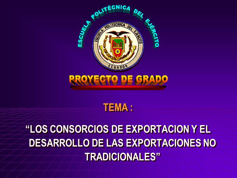 TEMA : LOS CONSORCIOS DE EXPORTACION Y EL DESARROLLO DE LAS EXPORTACIONES NO TRADICIONALES TEMA : LOS CONSORCIOS DE EXPORTACION Y EL DESARROLLO DE LAS