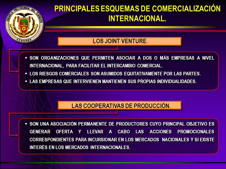 SON ORGANIZACIONES QUE PERMITEN ASOCIAR A DOS O MÁS EMPRESAS A NIVEL INTERNACIONAL, PARA FACILITAR EL INTERCAMBIO COMERCIAL.