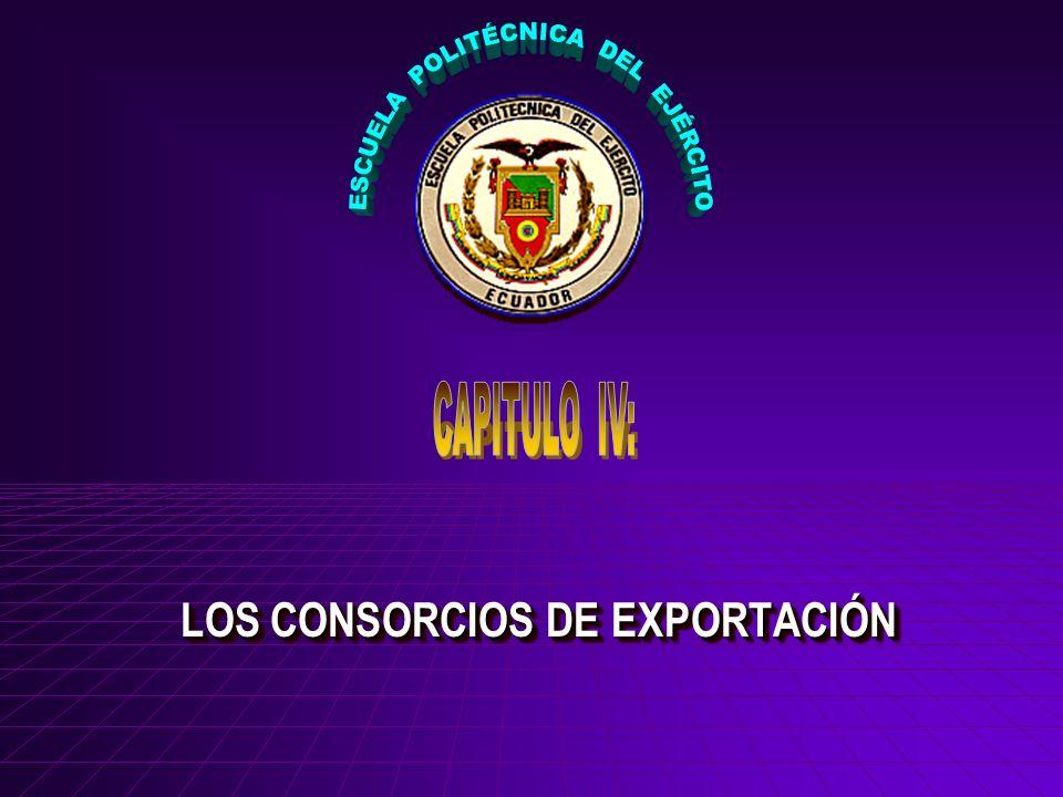 LOS CONSORCIOS DE EXPORTACIÓN