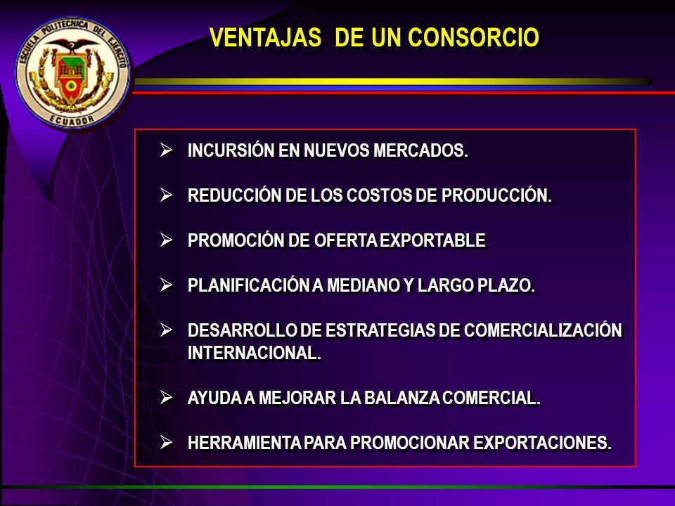 VENTAJAS DE UN CONSORCIO INCURSIÓN EN NUEVOS MERCADOS. REDUCCIÓN DE LOS COSTOS DE PRODUCCIÓN. PROMOCIÓN DE OFERTA EXPORTABLE PLANIFICACIÓN A MEDIANO Y