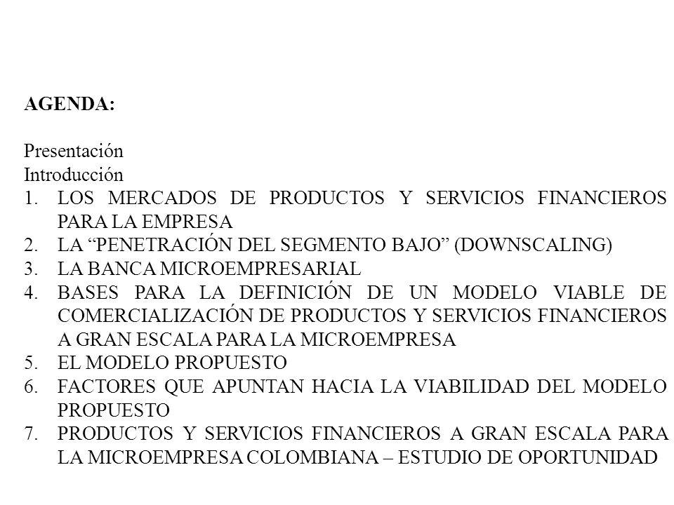 AGENDA: Presentación Introducción 1.LOS MERCADOS DE PRODUCTOS Y SERVICIOS FINANCIEROS PARA LA EMPRESA 2.LA PENETRACIÓN DEL SEGMENTO BAJO (DOWNSCALING)