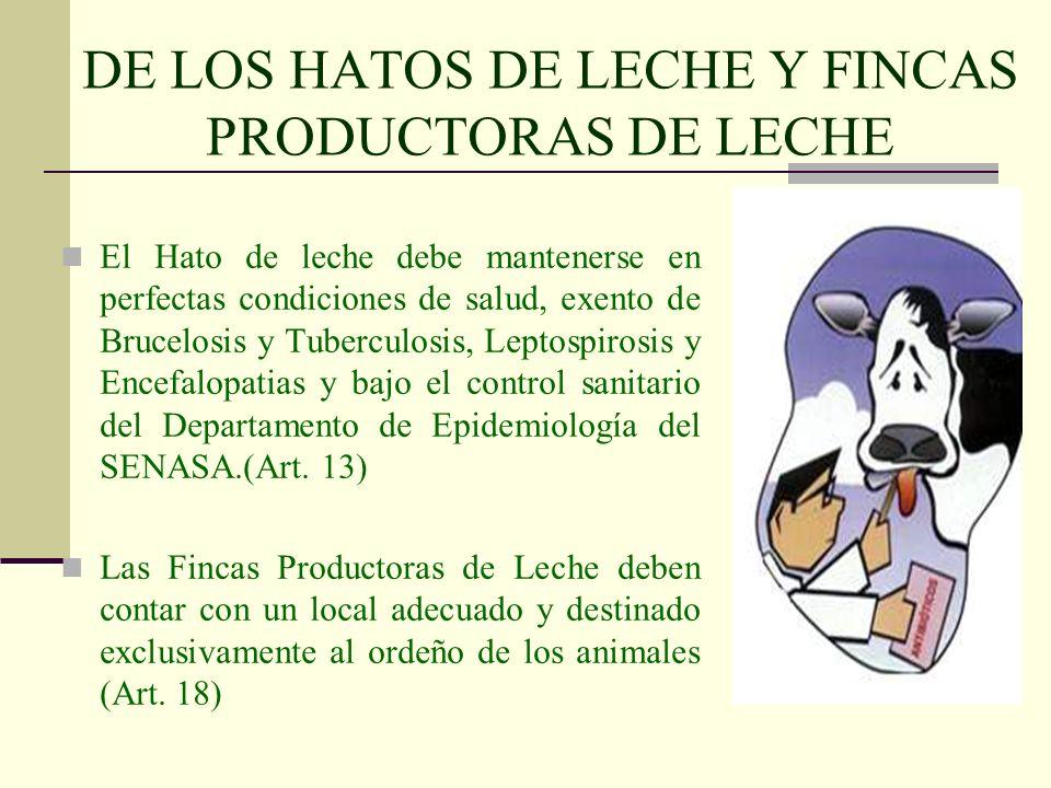 DE LOS HATOS DE LECHE Y FINCAS PRODUCTORAS DE LECHE El Hato de leche debe mantenerse en perfectas condiciones de salud, exento de Brucelosis y Tubercu