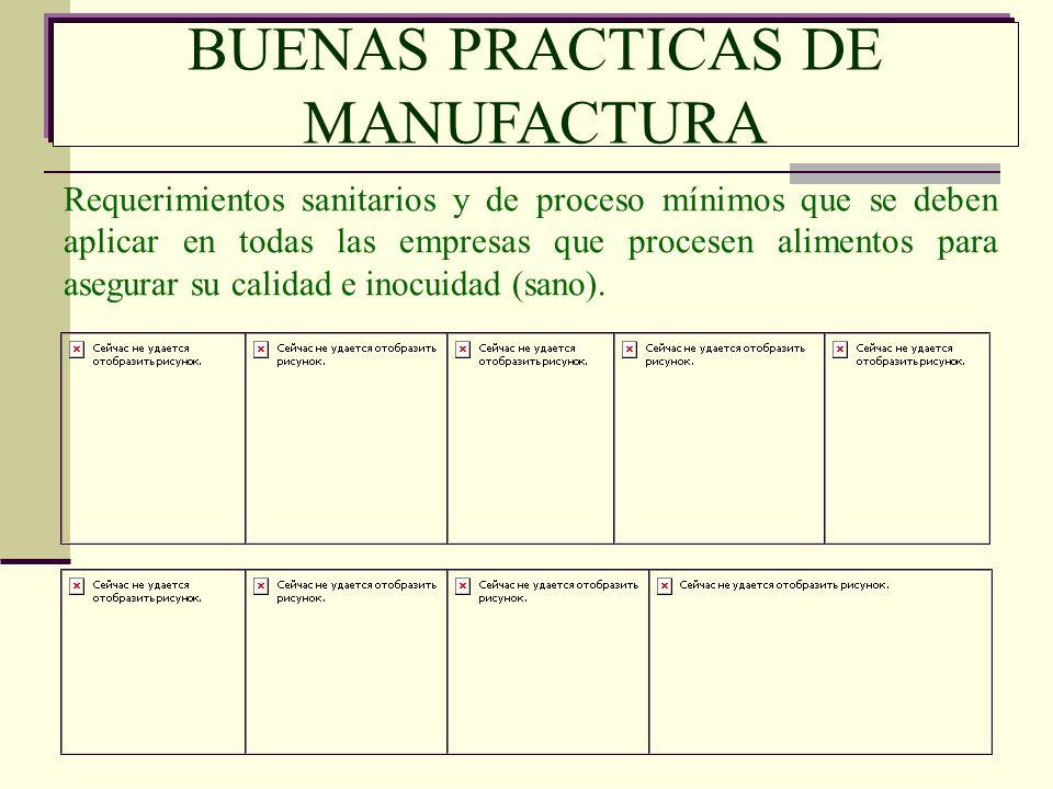 BUENAS PRACTICAS DE MANUFACTURA Requerimientos sanitarios y de proceso mínimos que se deben aplicar en todas las empresas que procesen alimentos para