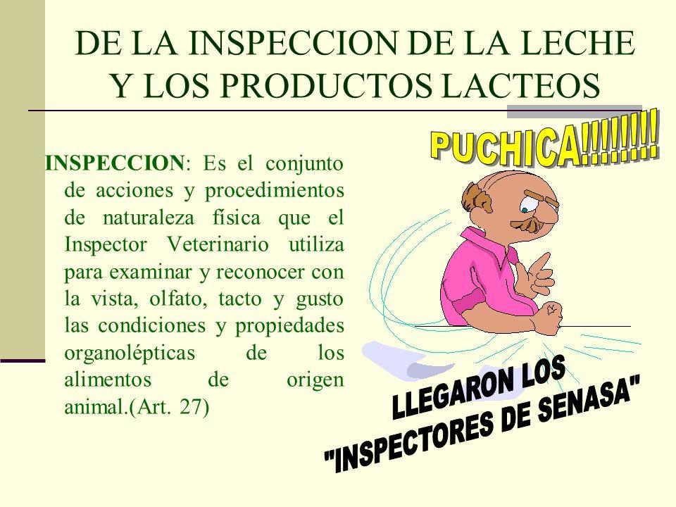 DE LA INSPECCION DE LA LECHE Y LOS PRODUCTOS LACTEOS INSPECCION: Es el conjunto de acciones y procedimientos de naturaleza física que el Inspector Vet