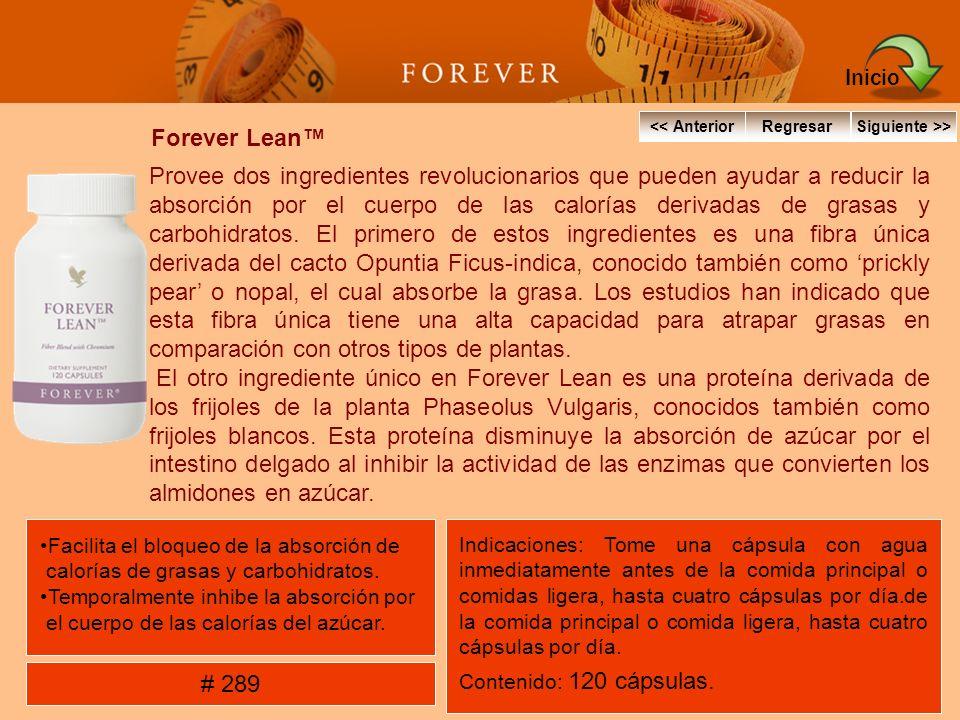 Forever Lean Provee dos ingredientes revolucionarios que pueden ayudar a reducir la absorción por el cuerpo de las calorías derivadas de grasas y carb