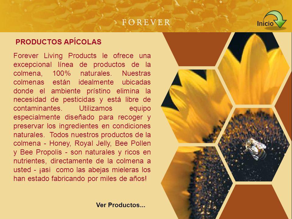 Forever Living Products le ofrece una excepcional línea de productos de la colmena, 100% naturales. Nuestras colmenas están idealmente ubicadas donde