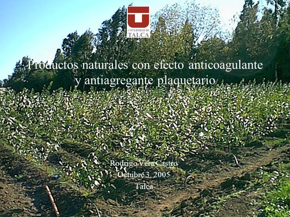 Productos naturales con efecto anticoagulante y antiagregante plaquetario Rodrigo Vera Castro Octubre 3, 2005 Talca