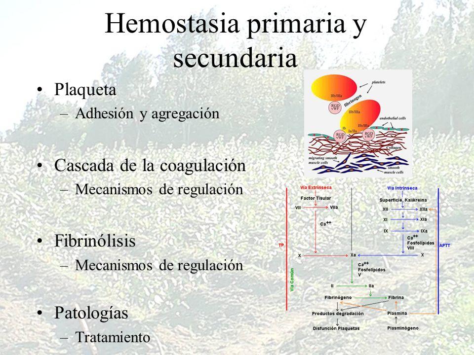 Hemostasia primaria y secundaria Plaqueta –Adhesión y agregación Cascada de la coagulación –Mecanismos de regulación Fibrinólisis –Mecanismos de regul