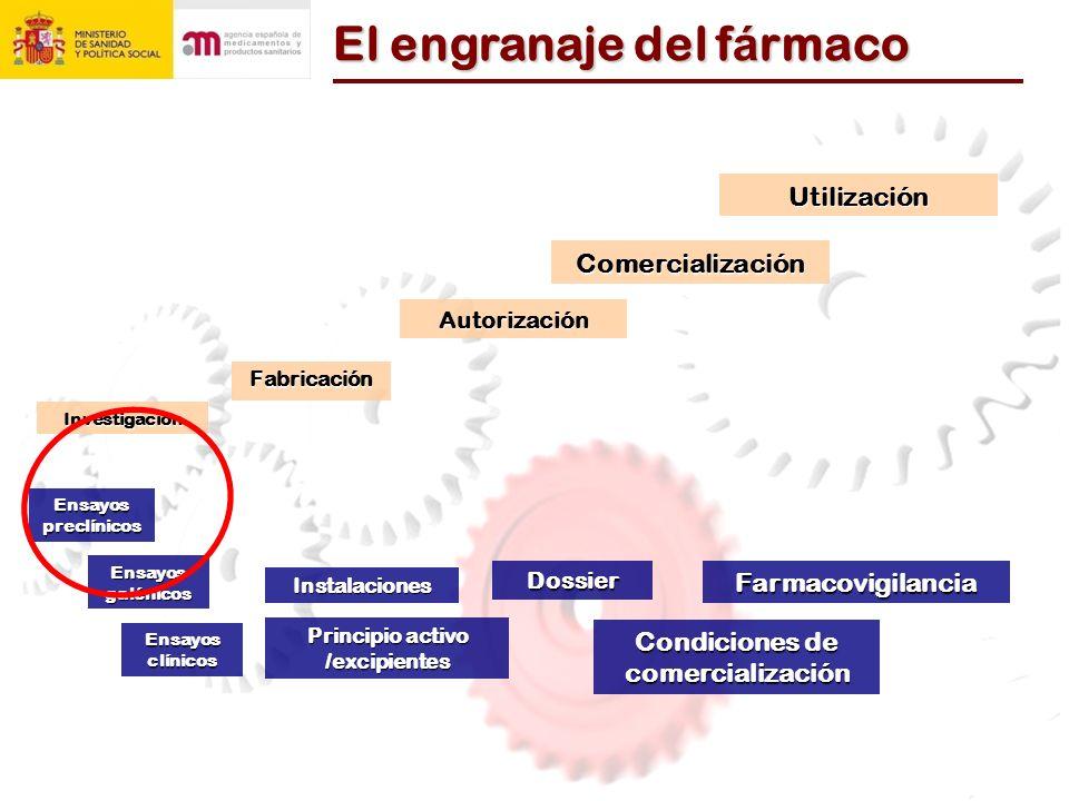El engranaje del f á rmaco Investigación Fabricación Autorización ComercializaciónUtilización Dossier Instalaciones Principio activo /excipientes Ensayos clínicos Ensayos preclínicos Ensayos galénicos Farmacovigilancia Condiciones de comercialización