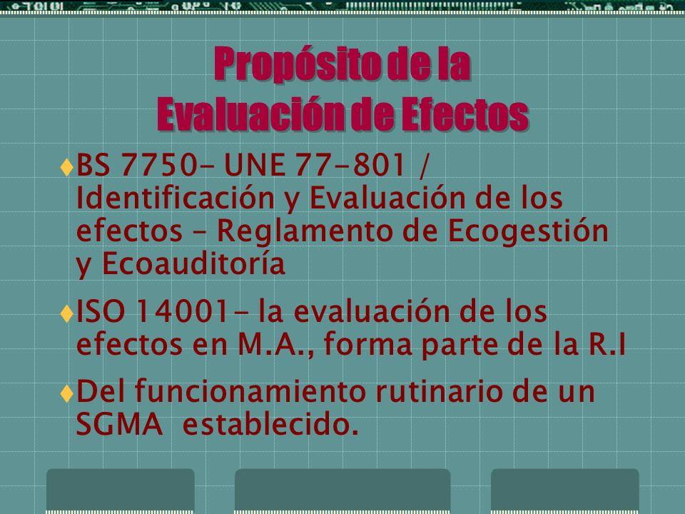 Evaluación Efectos M.A.
