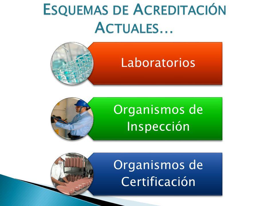 Categoría Cantidad de Laboratorios Total de Laboratorios 62 Laboratorios Acreditados 46 Laboratorios en Proceso de Acreditación 16 Laboratorios Acreditados con Alcances que incluyen análisis de alimentos.