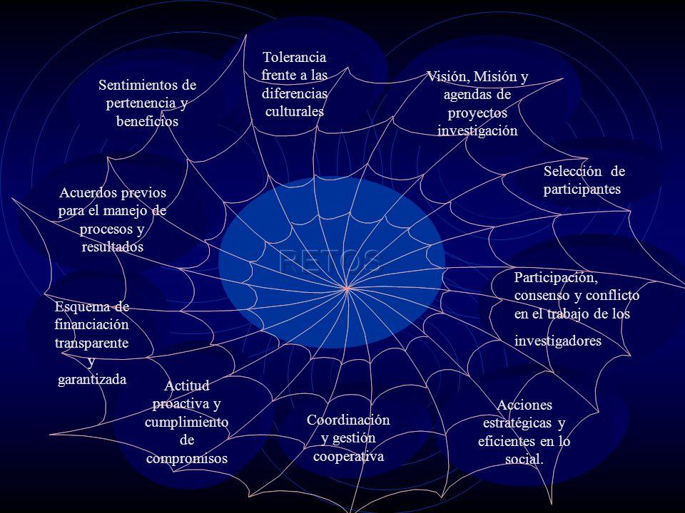 Tolerancia frente a las diferencias culturales Visión, Misión y agendas de proyectos investigación Selección de participantes Participación, consenso y conflicto en el trabajo de los investigadores Acciones estratégicas y eficientes en lo social.