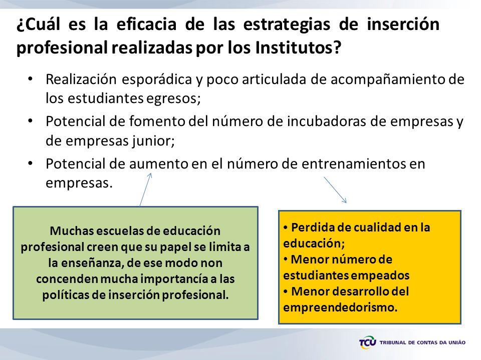 ¿Cuál es la eficacia de las estrategias de inserción profesional realizadas por los Institutos.