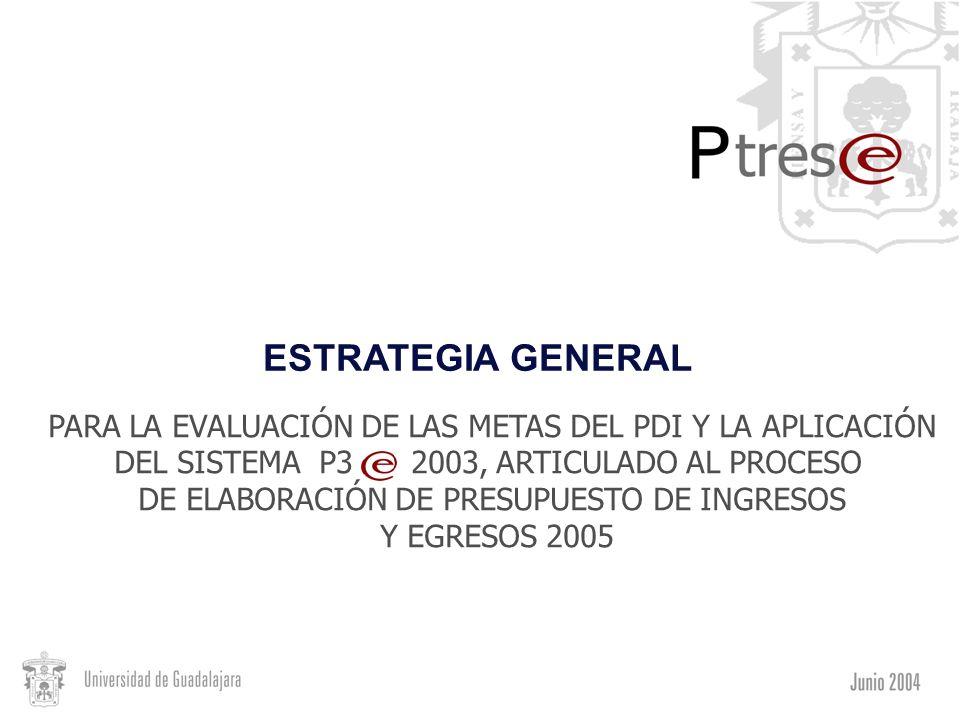 ESTRATEGIA GENERAL PARA LA EVALUACIÓN DE LAS METAS DEL PDI Y LA APLICACIÓN DEL SISTEMA P3 2003, ARTICULADO AL PROCESO DE ELABORACIÓN DE PRESUPUESTO DE