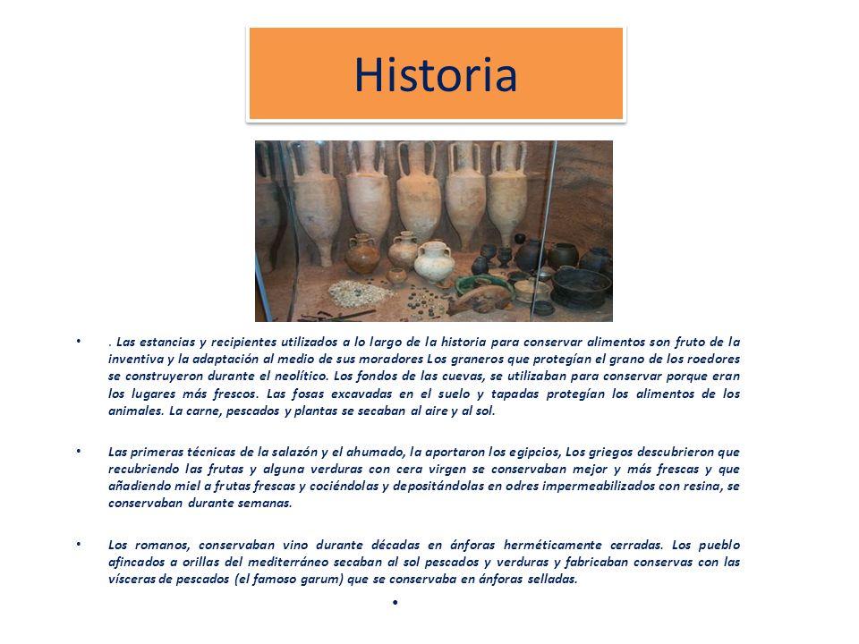 Historia. Las estancias y recipientes utilizados a lo largo de la historia para conservar alimentos son fruto de la inventiva y la adaptación al medio