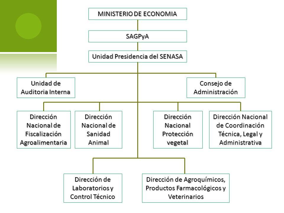 MINISTERIO DE ECONOMIA SAGPyA Unidad Presidencia del SENASA Unidad de Auditoria Interna Consejo de Administración Dirección Nacional de Fiscalización