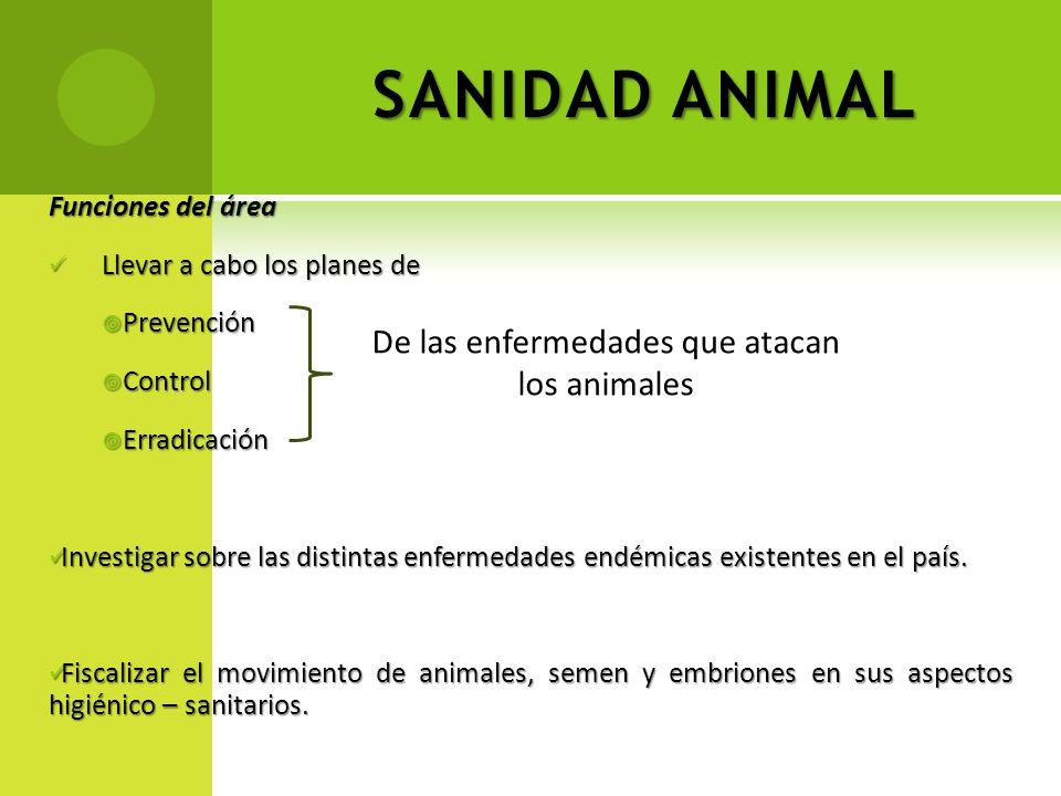 SANIDAD ANIMAL Funciones del área Llevar a cabo los planes de Llevar a cabo los planes de Prevención Prevención Control Control Erradicación Erradicac