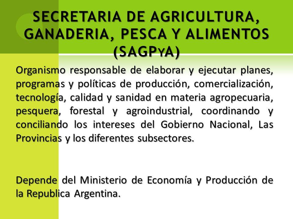 SECRETARIA DE AGRICULTURA, GANADERIA, PESCA Y ALIMENTOS (SAGP Y A) Organismo responsable de elaborar y ejecutar planes, programas y políticas de produ