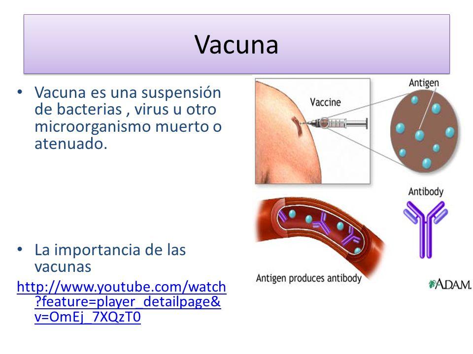 Vacuna Vacuna es una suspensión de bacterias, virus u otro microorganismo muerto o atenuado. La importancia de las vacunas http://www.youtube.com/watc
