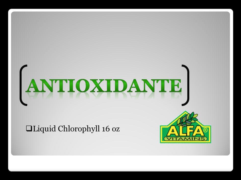 Liquid Chlorophyll 16 oz