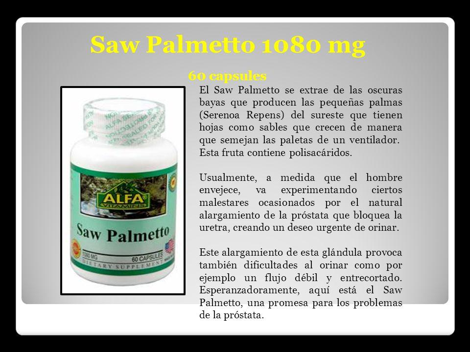 Saw Palmetto 1080 mg 60 capsules El Saw Palmetto se extrae de las oscuras bayas que producen las pequeñas palmas (Serenoa Repens) del sureste que tien
