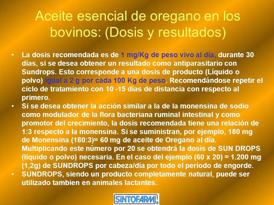 Aceite esencial de oregano en los bovinos: (Dosis y resultados) La dosis recomendada es de 1 mg/Kg de peso vivo al día, durante 30 días, si se desea o