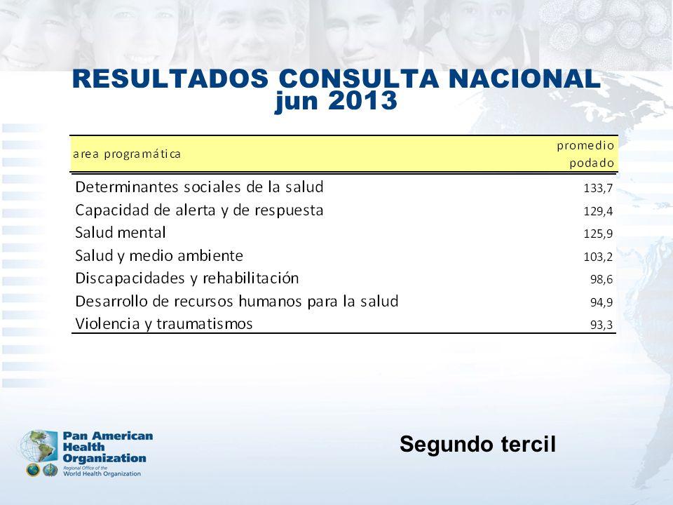 RESULTADOS CONSULTA NACIONAL jun 2013 Segundo tercil