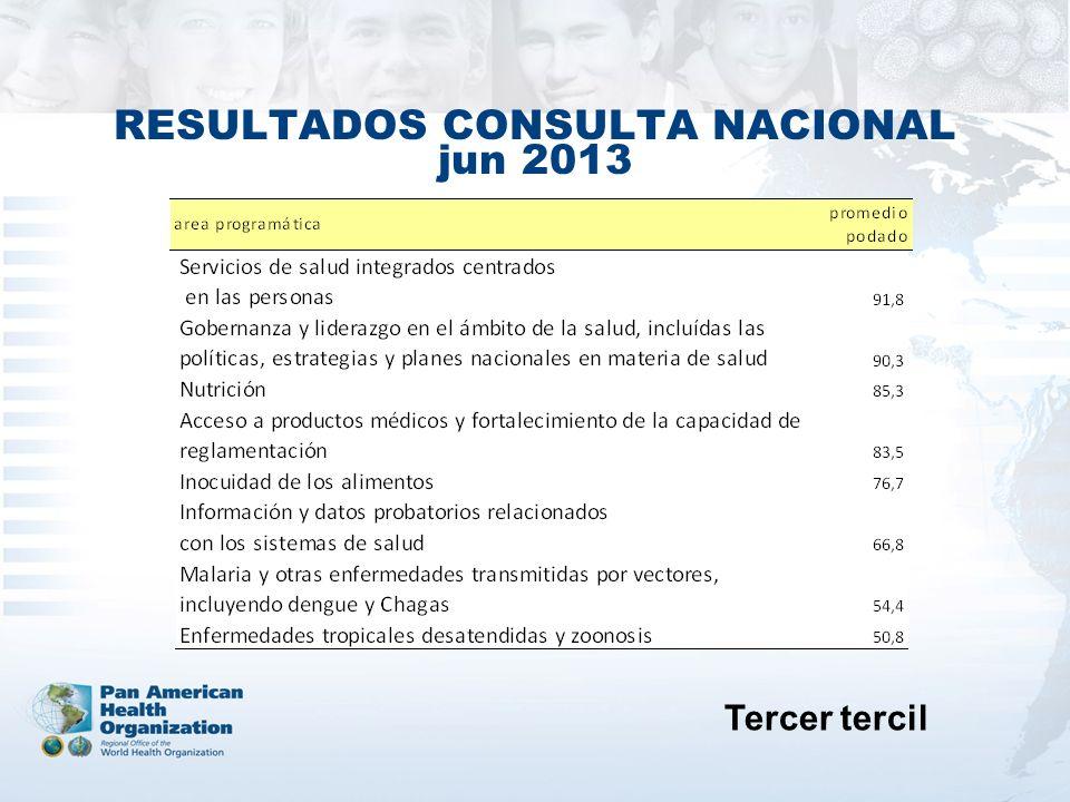 RESULTADOS CONSULTA NACIONAL jun 2013 Tercer tercil