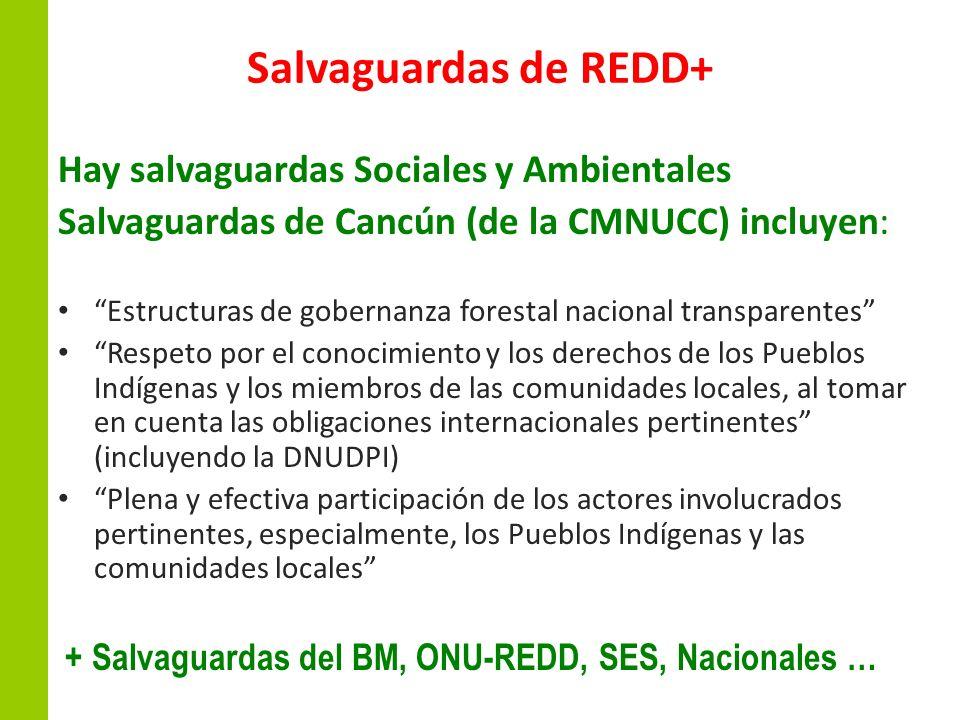 Salvaguardas de REDD+ Hay salvaguardas Sociales y Ambientales Salvaguardas de Cancún (de la CMNUCC) incluyen: Estructuras de gobernanza forestal nacio